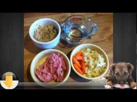 Healthy Homemade Dog Food - The Smart Nutrition Alternative