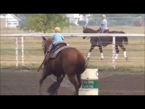 McHenry County Saddle Club Barrel Race 8/29/2015