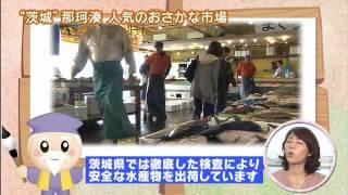 『磯山さやかの旬刊!いばらき』 魚市場 「磯山さやかの旬刊!いばらき...
