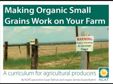 Making Organic Small Grains Work on Your Farm