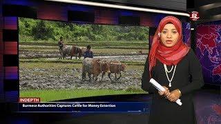 Rohingya Daily News 18 January 2018
