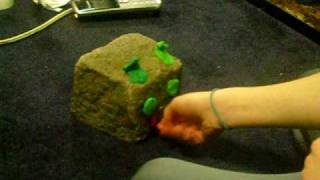 how to take care of a pet rock #1