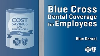 Blue Cross Dental Coverage for Employees