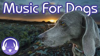 Soothing Dog Music: The BEST New Music for Relax Your Dog! - We've ...