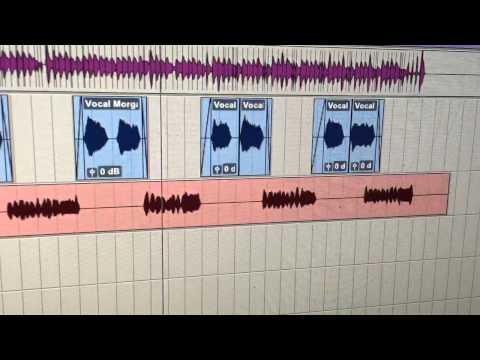 Senior Fellows - Tracking Vocals