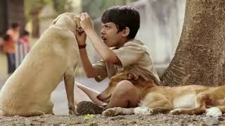 Taare Zameen Par  Aamir Khan Full Movie  HINDI 2007 720p HD