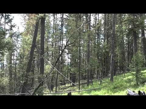 Montana Sapphire Claims: Sabotage?
