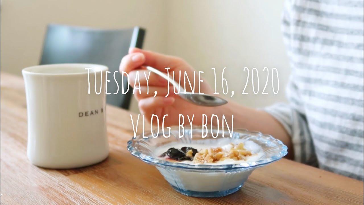 Vlog #79 [散歩コースをみつけたり、おうち焼肉、ホットサンドを作って食べる日常] のんびり主婦の毎日