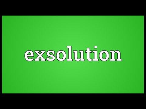 Header of exsolution
