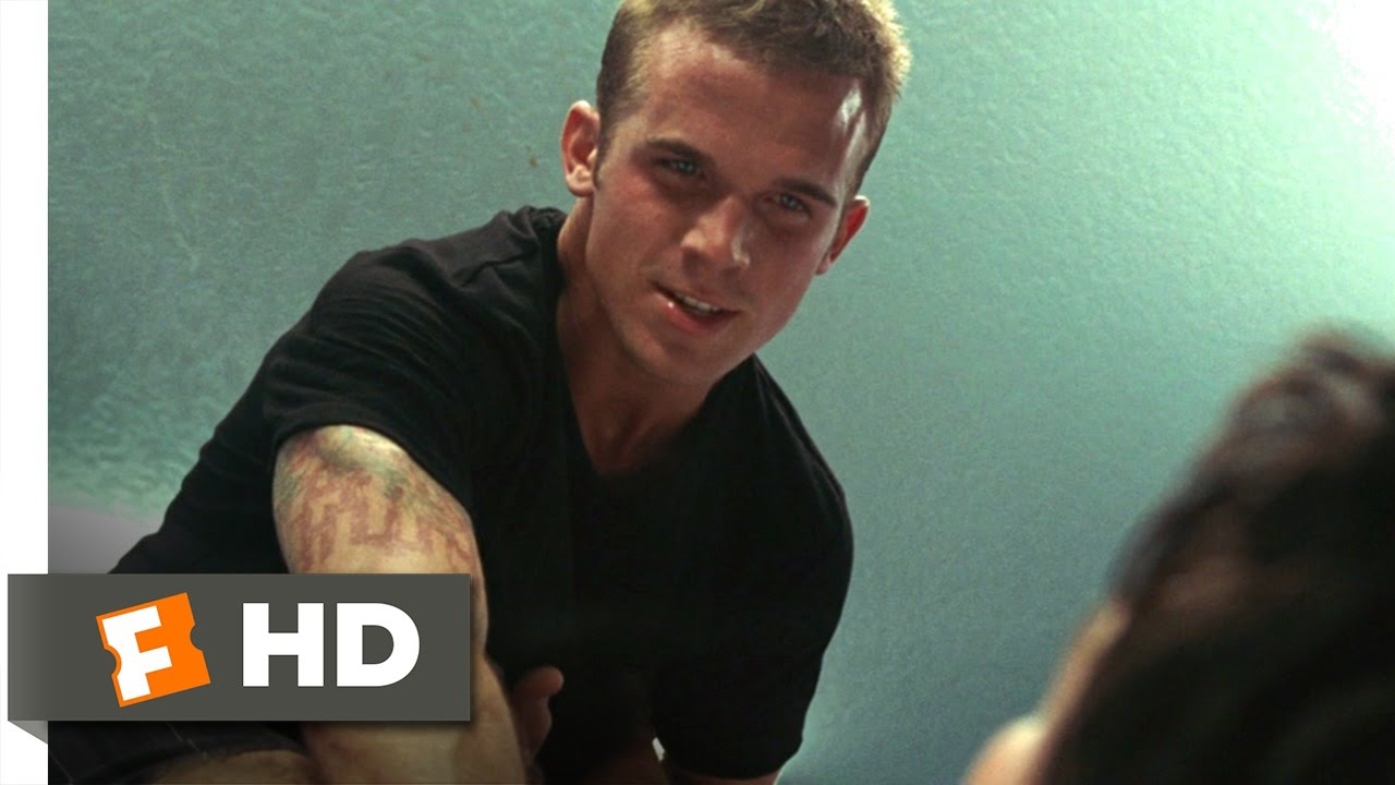 never back down movie series