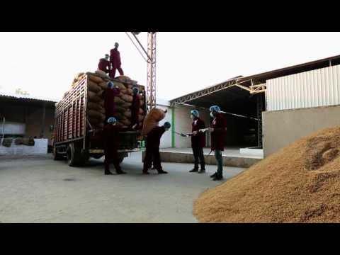 How Basmati Rice is Processed in Rajesh Industries Plant/Mill