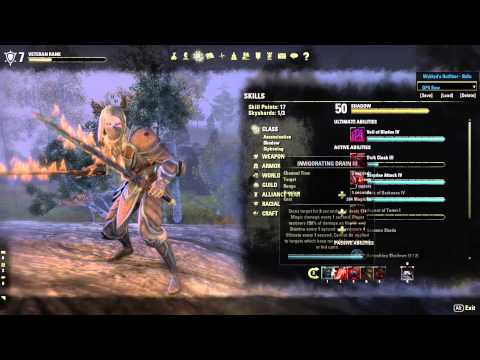 Teso Build Assassin Pve Solo