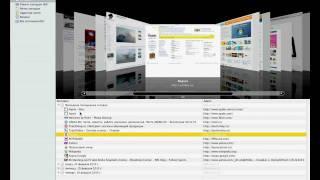 История просмотров, Private Surfing в Mac OS X 10.6 (30/44)