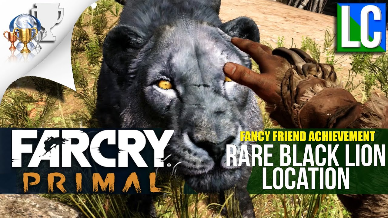 Far cry primal rare black lion location fancy friend achievement far cry primal rare black lion location fancy friend achievementtrophy youtube gumiabroncs Choice Image