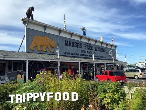 Marsh's Free Museum, Long Beach WA - Trippy Food Episode 143
