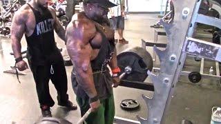 TRAPS (725 LB Shrugs): Kali Muscle + Thai + The Beast