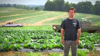 Fresh from Giant Eagle | Local Produce from Duda's Farm
