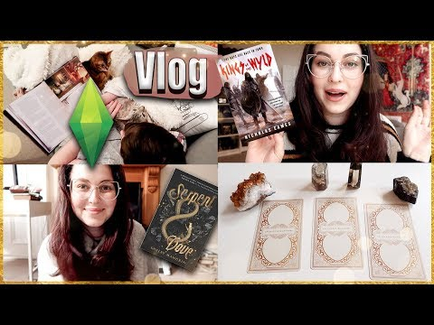 I actually read but then built a Harry Potter based Sims4 game so...-vlog | Book Roast