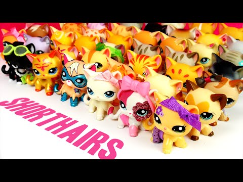All My LPS Shorthair Cats! [UPDATED]