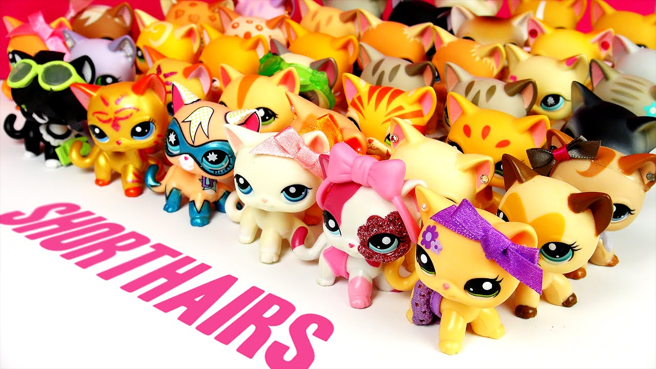 All My Lps Shorthair Cats Updated Youtube