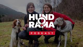 Hundorama - Episode 4: Å velge riktig rase thumbnail