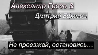 Александр Гросс и Дмитрий Ефимов-Не проезжай, остановись...