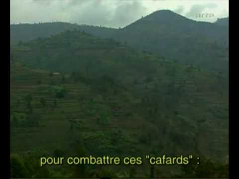 Rwanda - Radio Mille Colline: istigazioni al genocidio