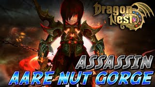 Dragon Nest - Assassin [Level 60 - Aare Nut Gorge]