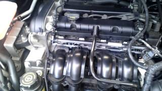 Ford Focus II TI-VCT cold engine start