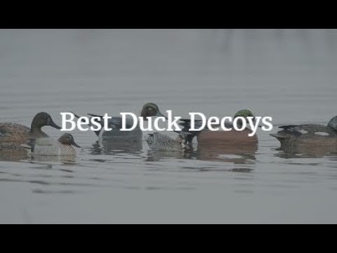 Best Duck Decoys 2019 Best Duck Decoys 2019   YouTube