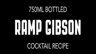 Diy Bottled Ramp Gibson Cocktail [no. 021]