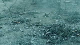 Börü dizisinde Hani Gökbörü türküsünün çaldığı sahne !