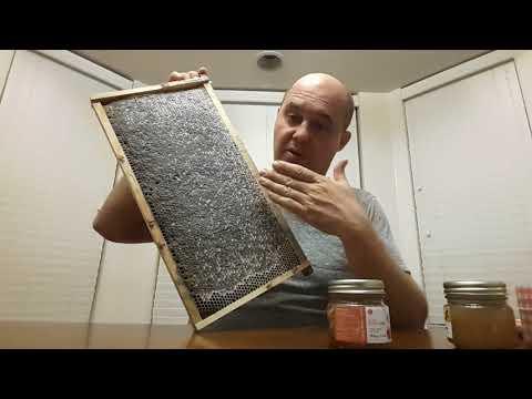 Мёд настоящий сырой необработанный #1