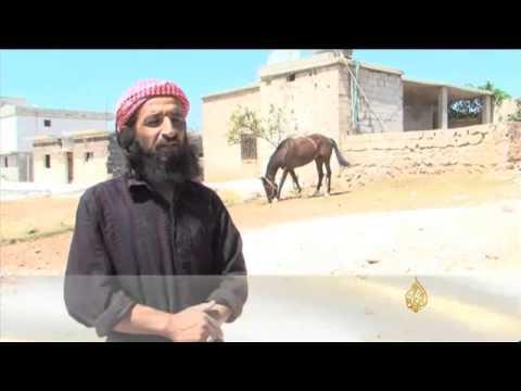 عودة تربية الخيول العربية الأصيلة لريف إدلب