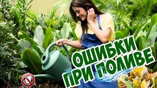 видео Лучшие советы по системе полива газона