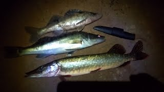 Рыбалка Осенью. Наловил всё таки Рыбы