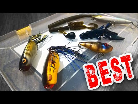 BEST LURES And FISHING RODS For FLORIDA BASS