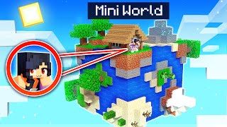 We're TRAPPED On A MINI WORLD In Minecraft!