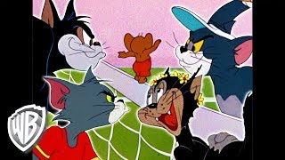 Tom y Jerry en Español Latino America | La rivalidad entre Tom y Butch | WB Kids