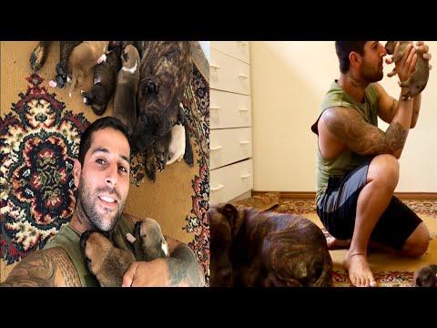 Pitbull İncinin yavrularıyla sabah vlogu.reina ve chief yavrulara yaklaşamıyor.