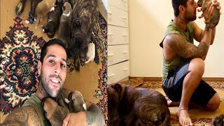 Morning vlog with pitbull puppies inci didint let reina and chief  near the pups