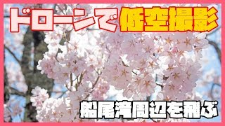 Hubsan H501sジンバル 船尾滝周辺の桜 船尾自然公園バーベキュー広場