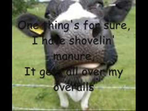 how do you milk a cow