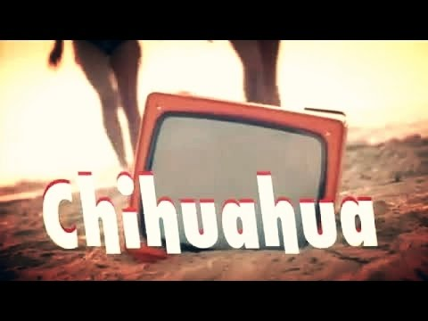 DJ BoBo - CHIHUAHUA ( Official Music Video )