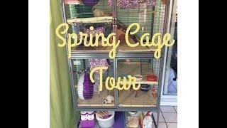 Rat Cage Tour Spring 2014