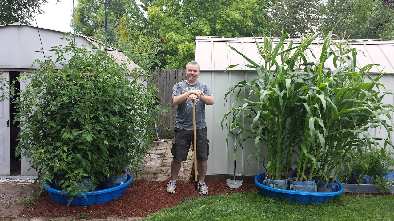 Merle cain from eugene oregon and his explosive kiddie for Baby garden pool