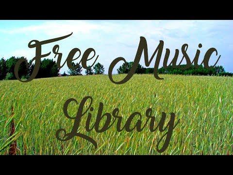 Royalty Free Music ♫ | Phoenix - Mattia Cupelli