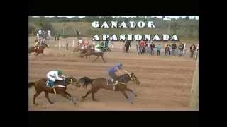 JOCKEY CLUB LA RIOJA-28-5-14-CHICA CHARLATANA-MARITA-JHONSAR-POR SI LARGA-APASIONADA