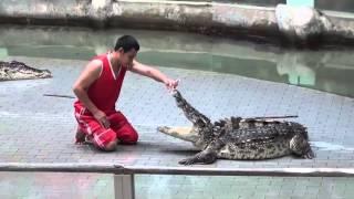 #98 Odkrywanie Chin - Krokodyle show