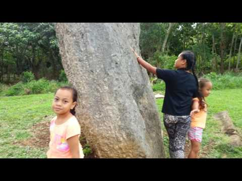 Luavaila seeing Tonga History